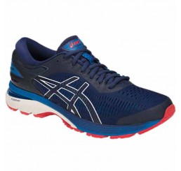 Кроссовки ASICS GEL-KAYANO 25 1011A019-400