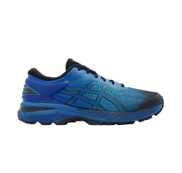 Кроссовки Asics Gel Kayano 25 Sp 1011A030-001